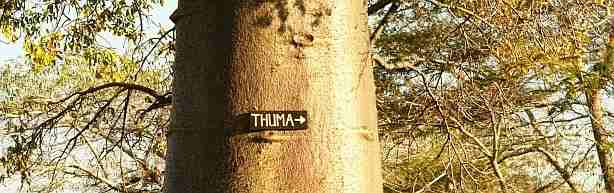 Thuma Forest Reserve
